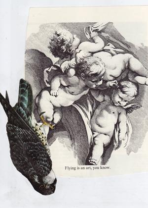 ick birdclaw thumb